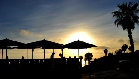 Shake Shack, Laguna Beach